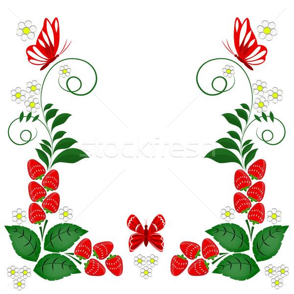 Díszítő terv elemek vektor fehér virágok Stock fotó © Phantom1311
