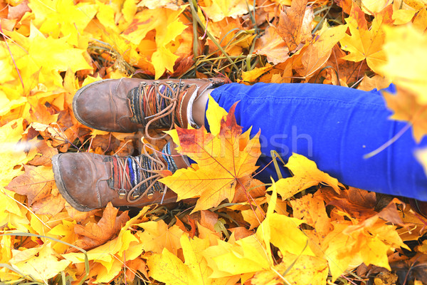 Cipők citromsárga juhar levelek ősz központ Stock fotó © Phantom1311