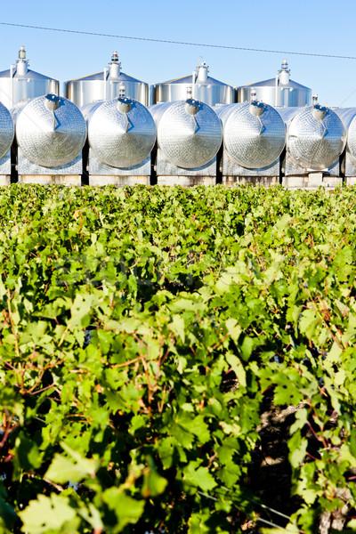 発酵 ボルドー 地域 フランス 農業 タンク ストックフォト © phbcz