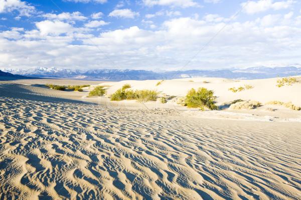 песок смерти долины парка Калифорния США Сток-фото © phbcz