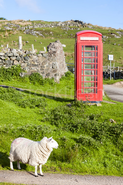 Stock photo: telephone booth with sheep, Clashnessie, Highlands, Scotland