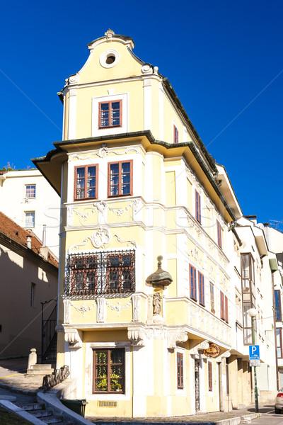 Huis goede herder Bratislava Slowakije gebouw Stockfoto © phbcz