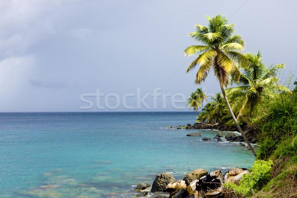 Crayfish Bay, Grenada Stock photo © phbcz