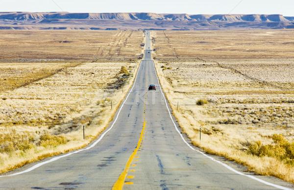 road transport, Colorado, USA Stock photo © phbcz