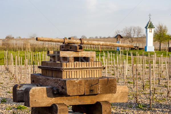 вино прессы виноградник чешский Чешская республика весны Сток-фото © phbcz