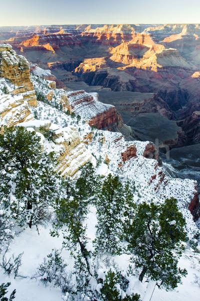 Grand Canyon parco inverno Arizona USA panorama Foto d'archivio © phbcz