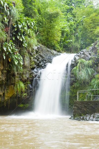 Annadale Falls, Grenada Stock photo © phbcz