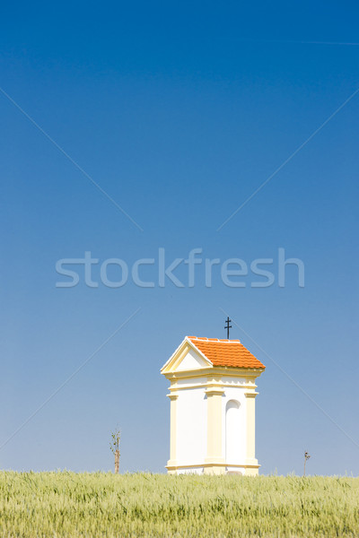 Işkence tahıl güney Çek Cumhuriyeti Stok fotoğraf © phbcz
