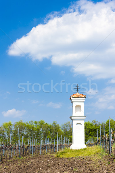 God's torture with vineyard near Palava, Czech Republic Stock photo © phbcz