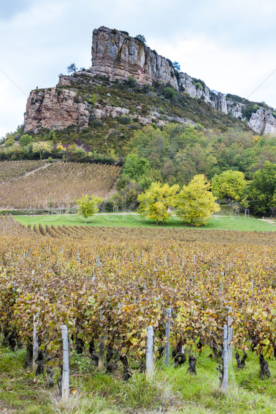Solutre Rock with vineyard, Burgundy, France Stock photo © phbcz