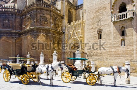 carriages in front of Cathedral of Seville, Andalusia, Spain Stock photo © phbcz