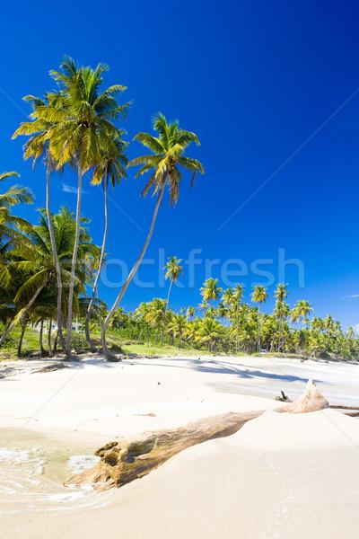 Cumana Bay, Trinidad Stock photo © phbcz