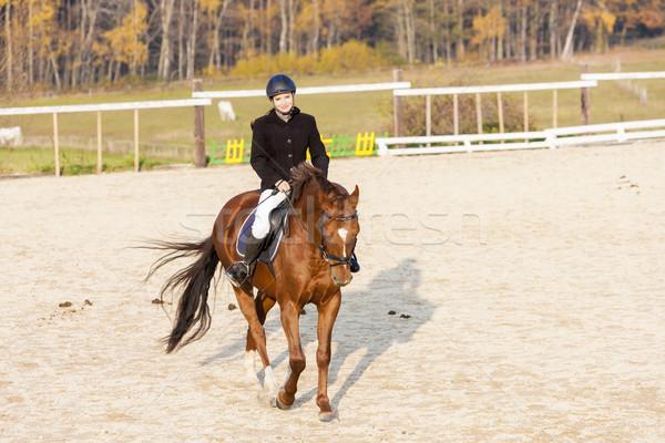 Lovas lóháton nők ló fut pihen Stock fotó © phbcz