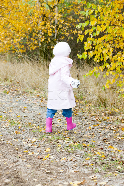 little girl in autumnal nature Stock photo © phbcz
