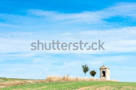 Işkence ayçiçeği alan kale Çek Cumhuriyeti Bina Stok fotoğraf © phbcz