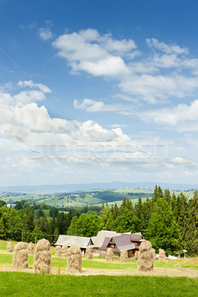 landscape of Tatras near Zakopane, Poland Stock photo © phbcz
