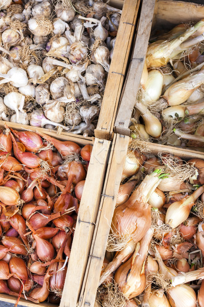 onions and garlics, market in Forcalquier, Provence, France Stock photo © phbcz