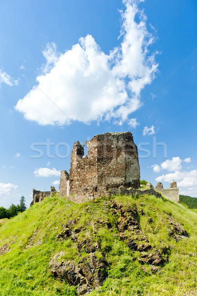 ruins of Lichnice Castle, Czech Republic Stock photo © phbcz