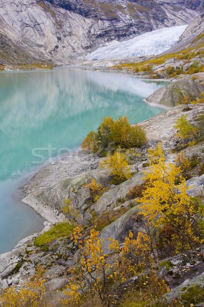 Nigardsbreen Glacier, Jostedalsbreen National Park, Norway Stock photo © phbcz