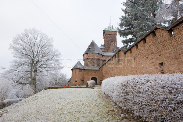Haut-Koenigsbourg Castle, Alsace, France Stock photo © phbcz