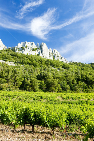 vineyards near Gigondas at Col Du Cayron, Provence, France Stock photo © phbcz