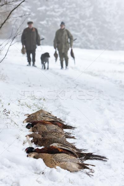 hunters at hunt Stock photo © phbcz