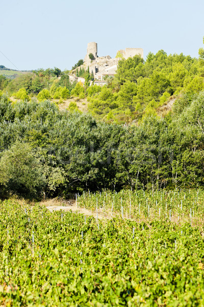 castle in Durban-Corbiere with vineyards, Languedoc-Roussillon,  Stock photo © phbcz