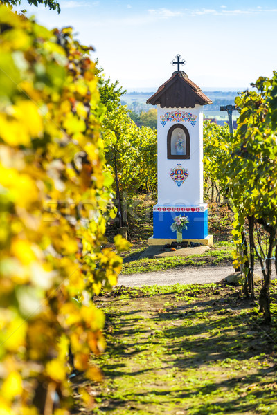 God's torture with vineyard near Nechory, Czech Republic Stock photo © phbcz