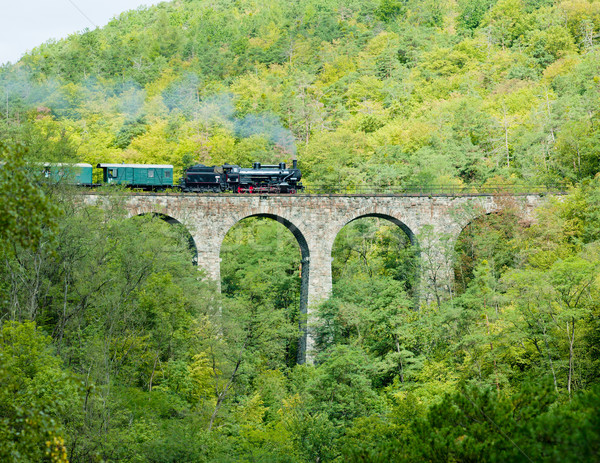 Zampach viaduct, Czech Republic Stock photo © phbcz