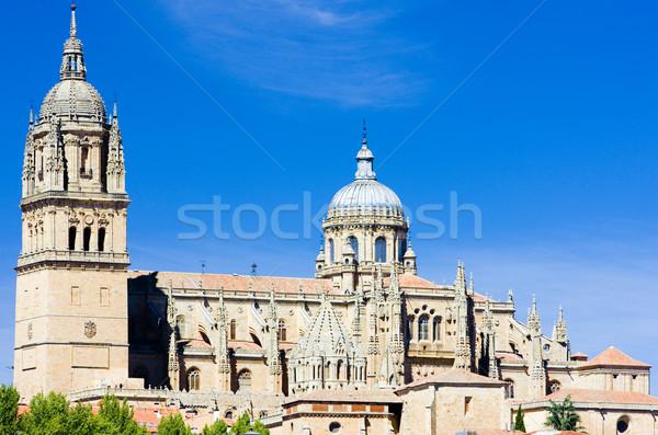 Salamanca, Castile and Leon, Spain Stock photo © phbcz