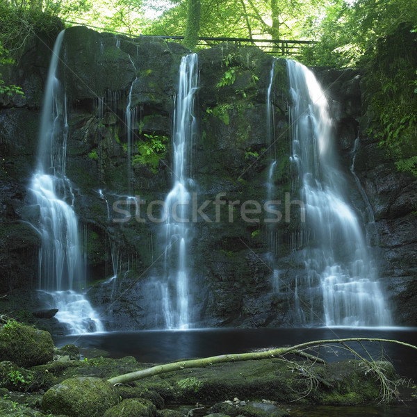 Glenariff Waterfalls, County Antrim, Northern Ireland Stock photo © phbcz