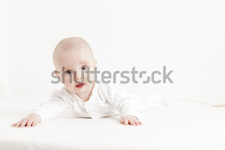 Vijf maanden oude meisje baby Stockfoto © phbcz