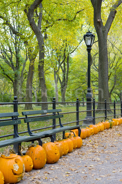 autumnal Central Park, New York City, USA Stock photo © phbcz