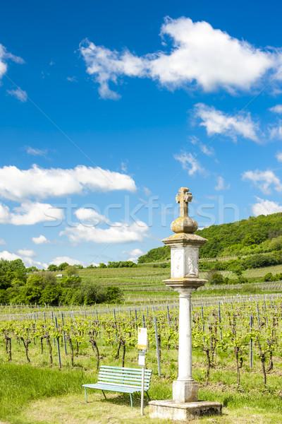 виноградник снизить Австрия крест Европа винограда Сток-фото © phbcz