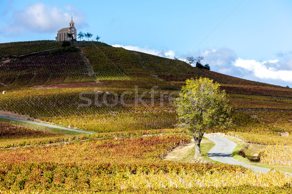 église paysage automne architecture Europe vigne Photo stock © phbcz