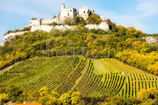 руин замок виноградник осень снизить Австрия Сток-фото © phbcz