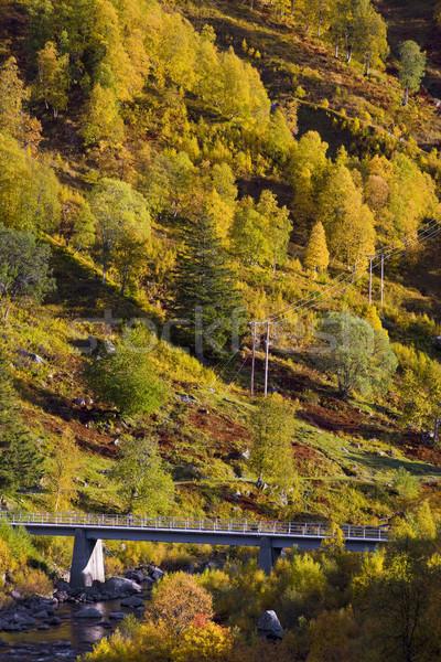 landscape of Southern Vestlandet, Norway Stock photo © phbcz