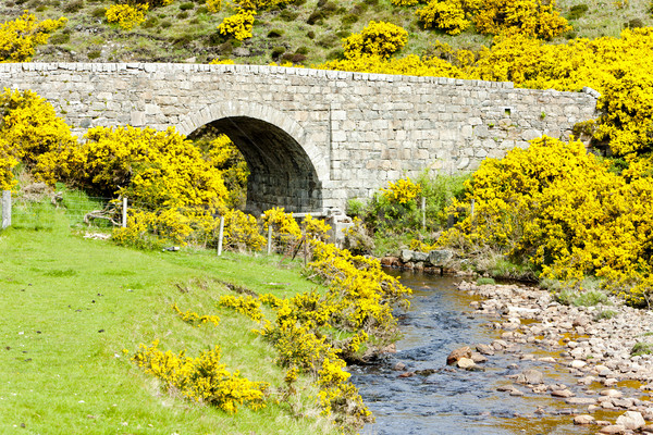 Stock photo: bridge near Armadale Bay, Highlands, Scotland