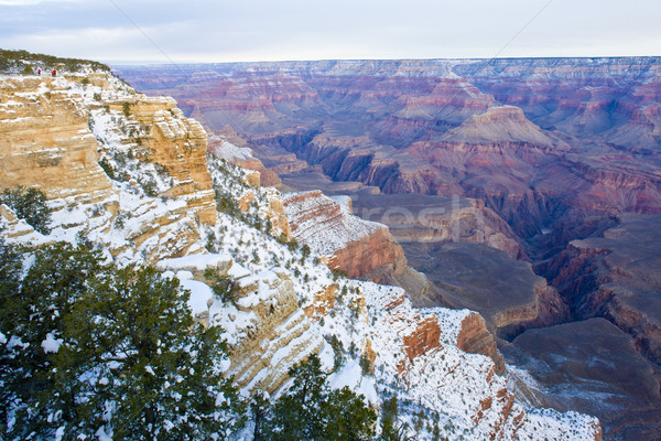 Grand Canyon Park Winter Arizona USA Landschaft Stock foto © phbcz