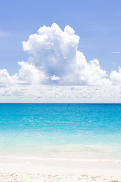 пляж Барбадос Карибы облака пейзаж Сток-фото © phbcz