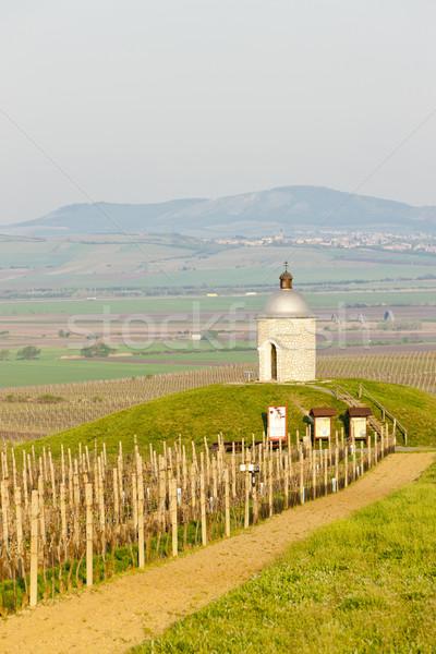 Chapelle vignoble République tchèque architecture Europe agriculture Photo stock © phbcz