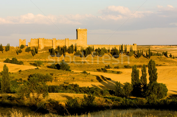 Penaranda de Duero Castle, Burgos Province, Castile and Leon, Sp Stock photo © phbcz