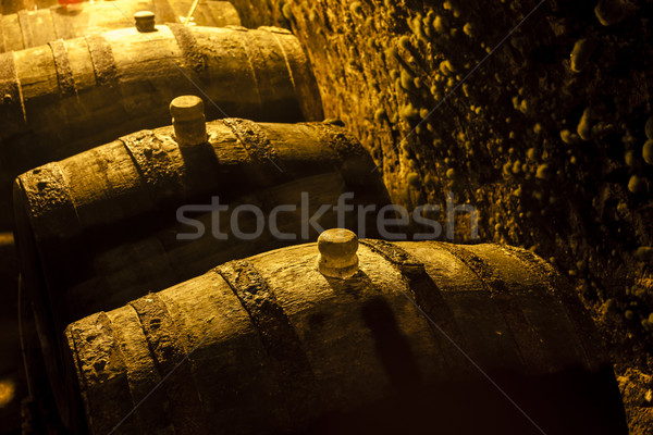 Stock photo: wine cellar, Czech Republic