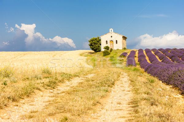 часовня лаванды зерна полях плато здании Сток-фото © phbcz