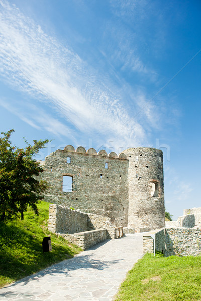 Devin Castle, Slovakia Stock photo © phbcz