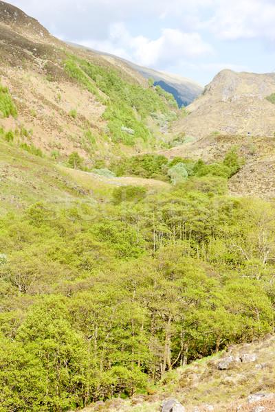 Tierras altas Escocia paisaje silencio naturales aire libre Foto stock © phbcz