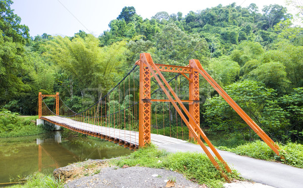 suspension bridge, Blanchisseuse, Trinidad Stock photo © phbcz