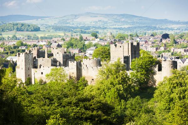 Ruiny zamek Anglii budynku architektury Europie Zdjęcia stock © phbcz