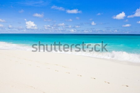 Stockfoto: Barbados · caribbean · landschap · zee · zomer · zand