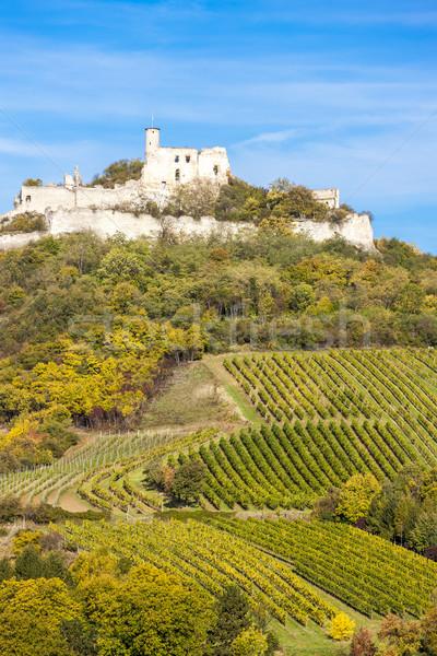 Foto stock: Ruínas · castelo · vinha · outono · baixar · Áustria